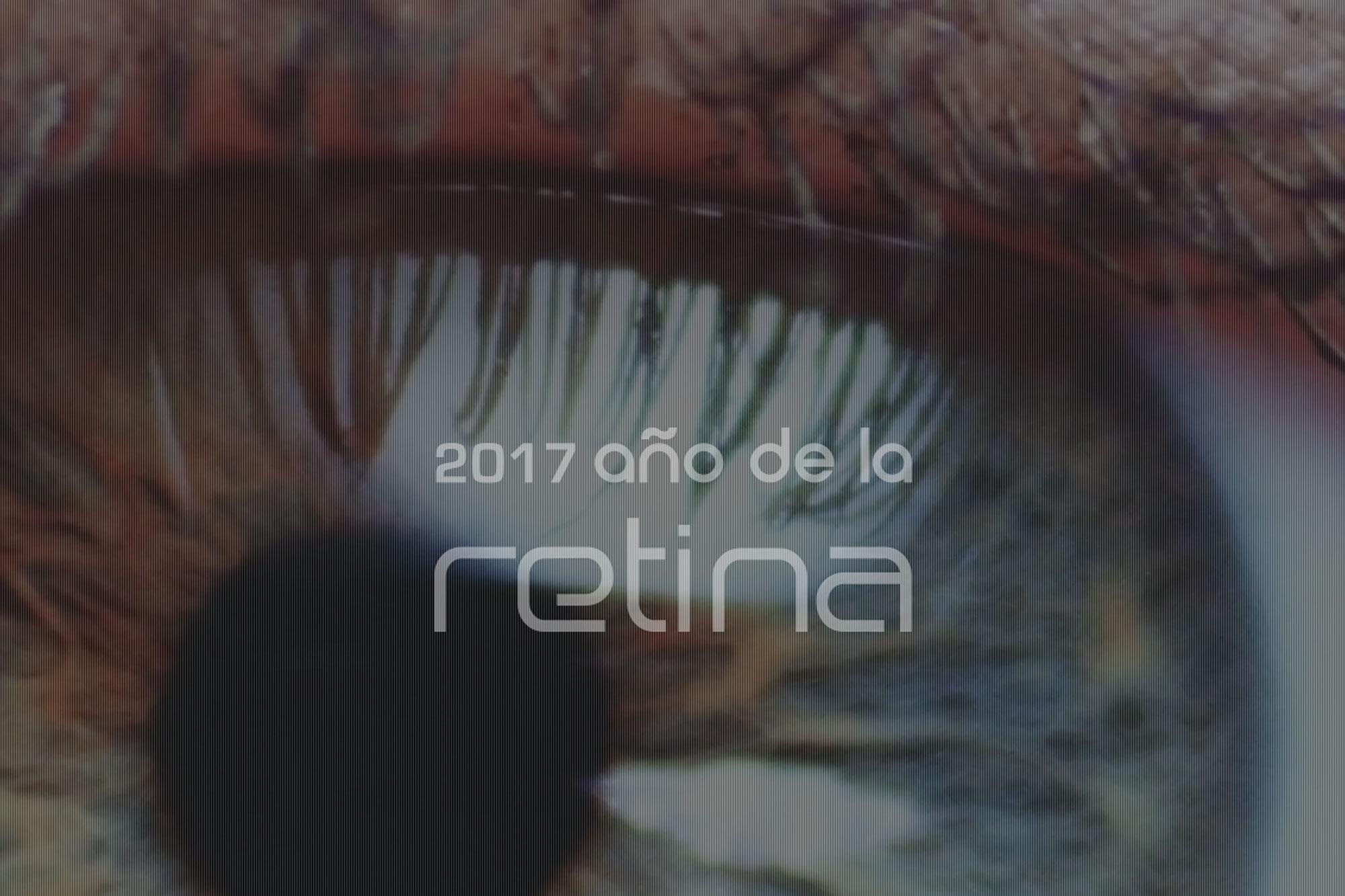 2017. Año De La Retina En España