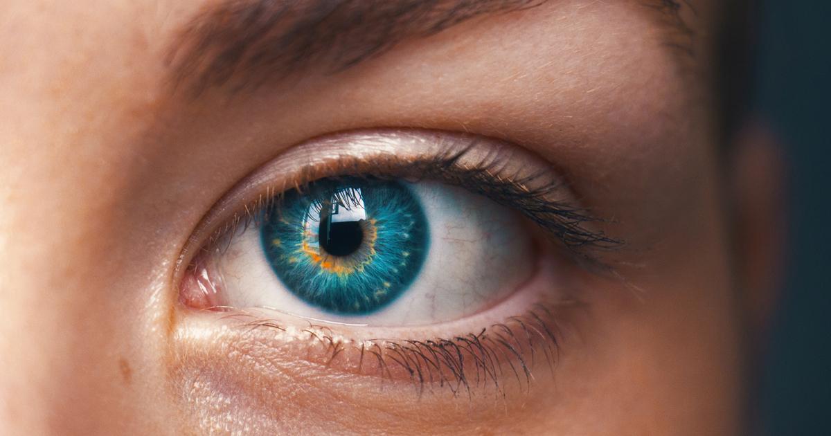 La Importancia De Los Movimientos Oculares