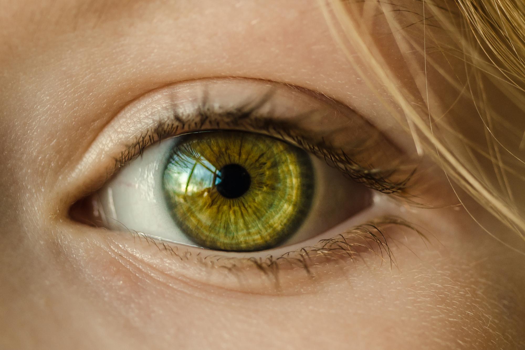 Los Ojos, Tan Importantes Como Desconocidos