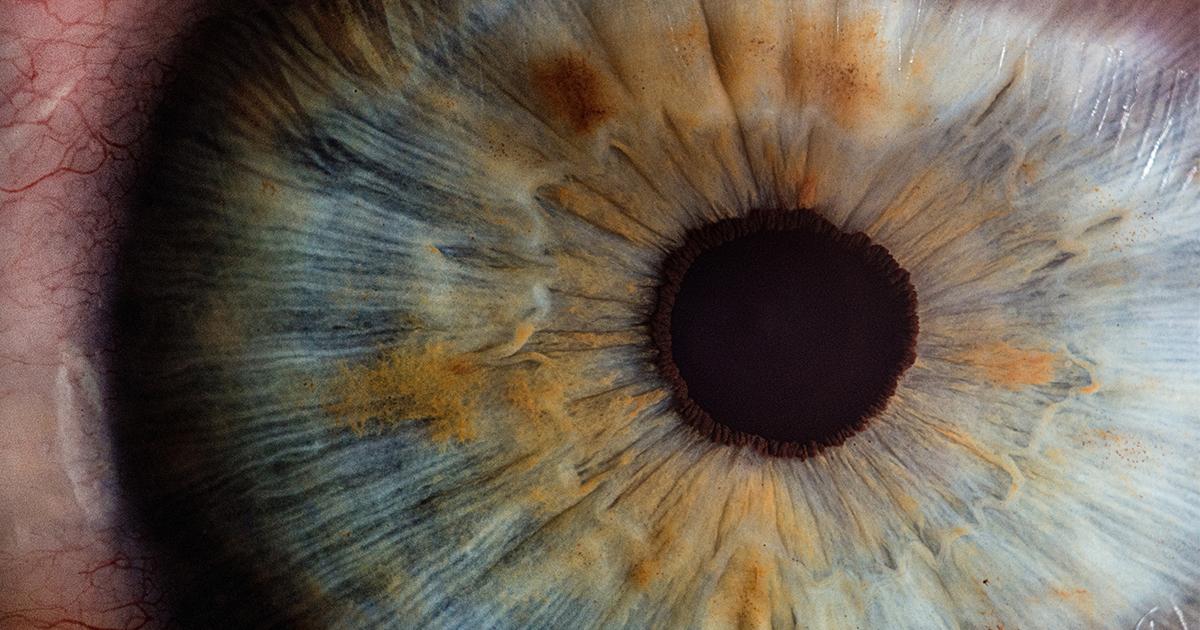 Pupila Portada